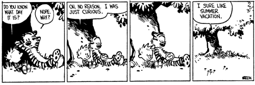 calvin-vacation-1